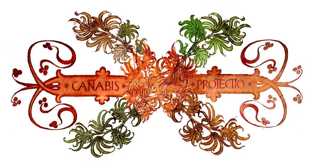 adesivo cannabis protectio