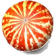 Meloni e dintorni