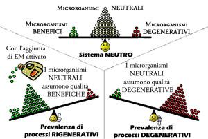 schema prevalenza