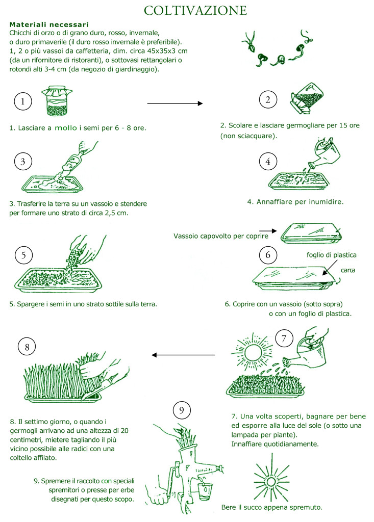 _istruzioni-1