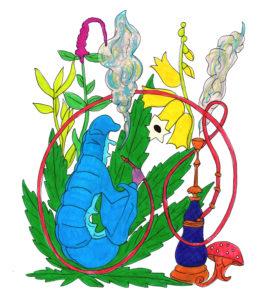 brucaliffo pianteinnovative